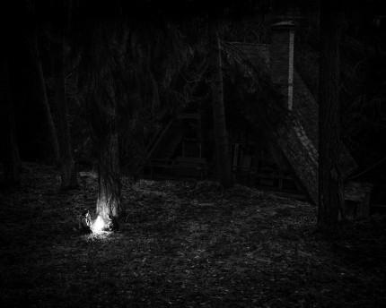 Pilt Karel Kraviku fotoseeriast Blood Unquiet / Rahutu veri.